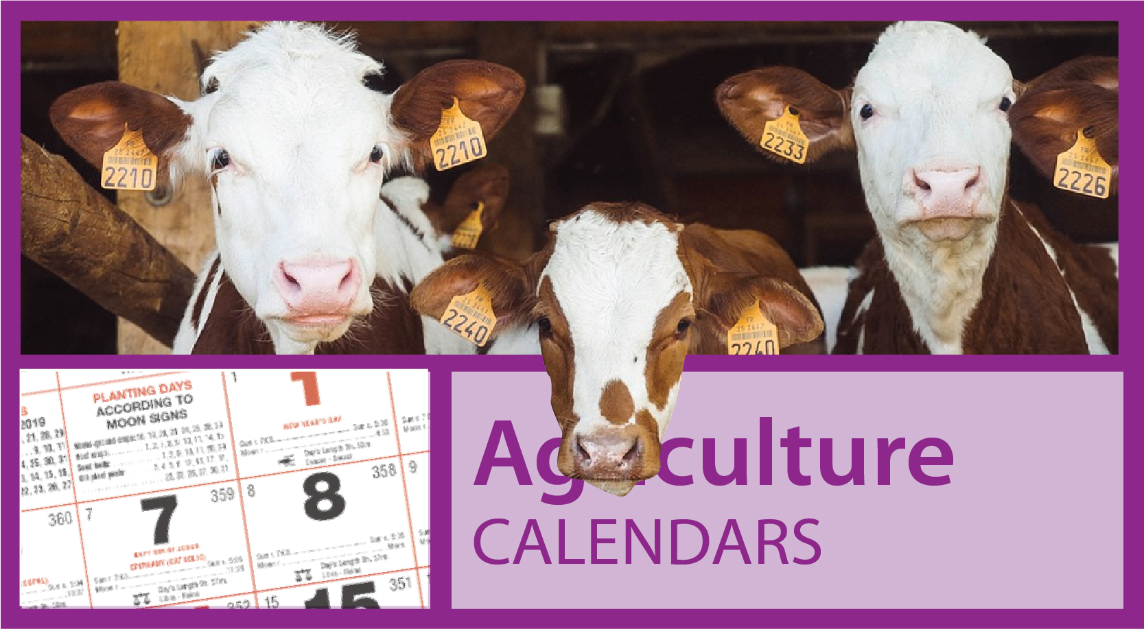 Farm Animal Calendar | Agri Calendars