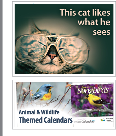 Cat & Dog Calendars | Pet Calendars | Puppies & Kittens Calendars