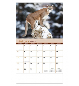 Wildlife Spiral Calendar
