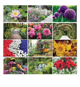 Garden Splendor 6-Sheet Desk Calendar
