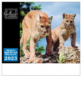 North American Wildlife Calendar III