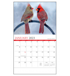 Nature's Songbirds Calendar