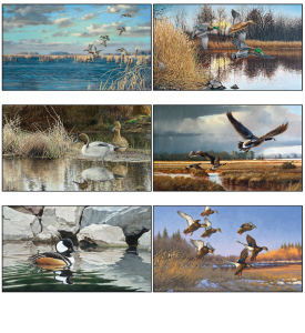 North American Waterfowl Calendar
