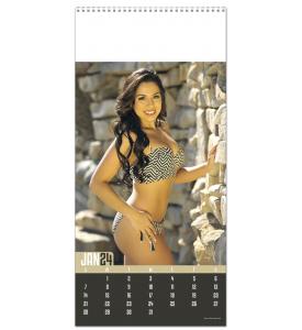 Swimsuit Calendar