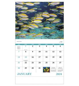 Ocean Glory Calendar