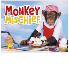 Monkey Mischief Calendar