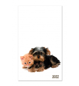 Colorful Impressions Monthly Pocket Planner - PUPPIES & KITTIES