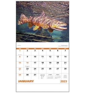 2019 Fishing Calendar 11 Quot X 19 Quot Imprinted Staple Bound