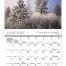 Reflections - Catholic Calendar