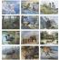 Wildlife Collection Calendar