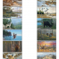 Wildlife Art (12 Sheet) Calendar
