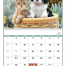 Puppies & Kittens Spiral Calendar