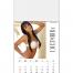 Vitronic Sunshine Girls Magna-Stick™ Calendar