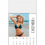 Vitronic Sunshine Girls Magna-Stick™ Calendar