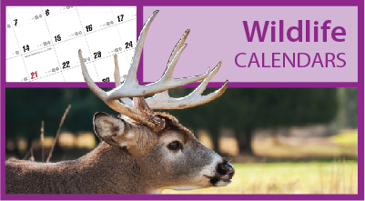 Promotional Fishing Calendars | Hunting Calendars | Sportsmen Calendars